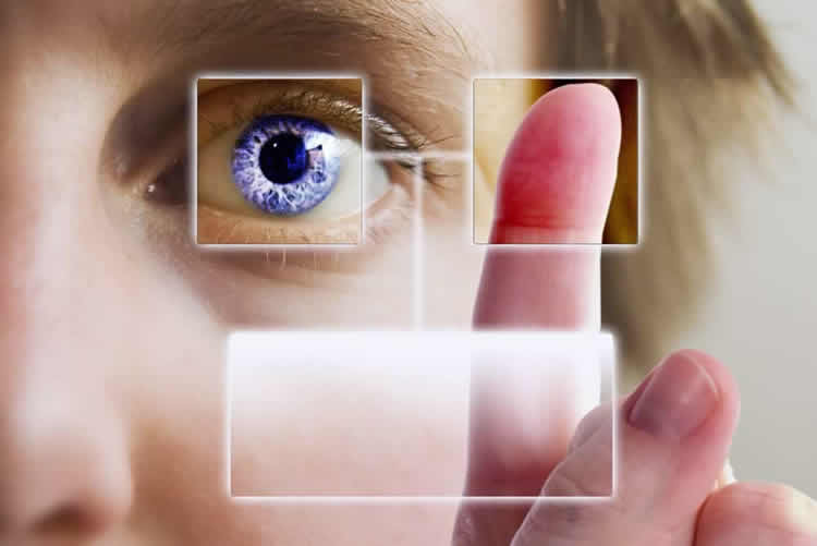 Biometric Security Systems