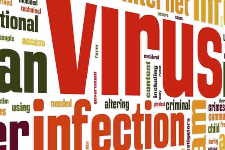 Virus and Malware Removal